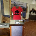 Bison Exhibit at High Plains Museum in Goodland, KS